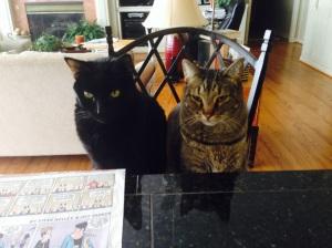 Max & Timmy