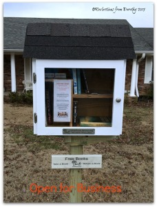 little-free-library3