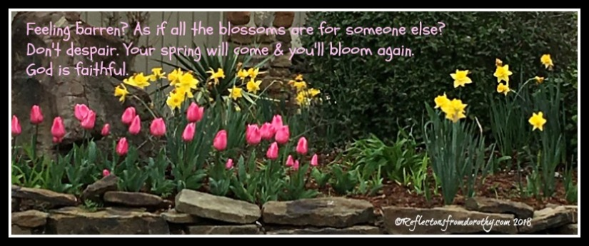 You'll bloom again